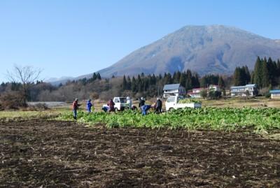 2010nozawana